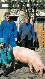 Hohenlohe Qualitätsfleisch - Schwein aus gutem Stall